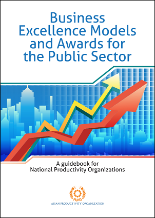 understanding the public sector